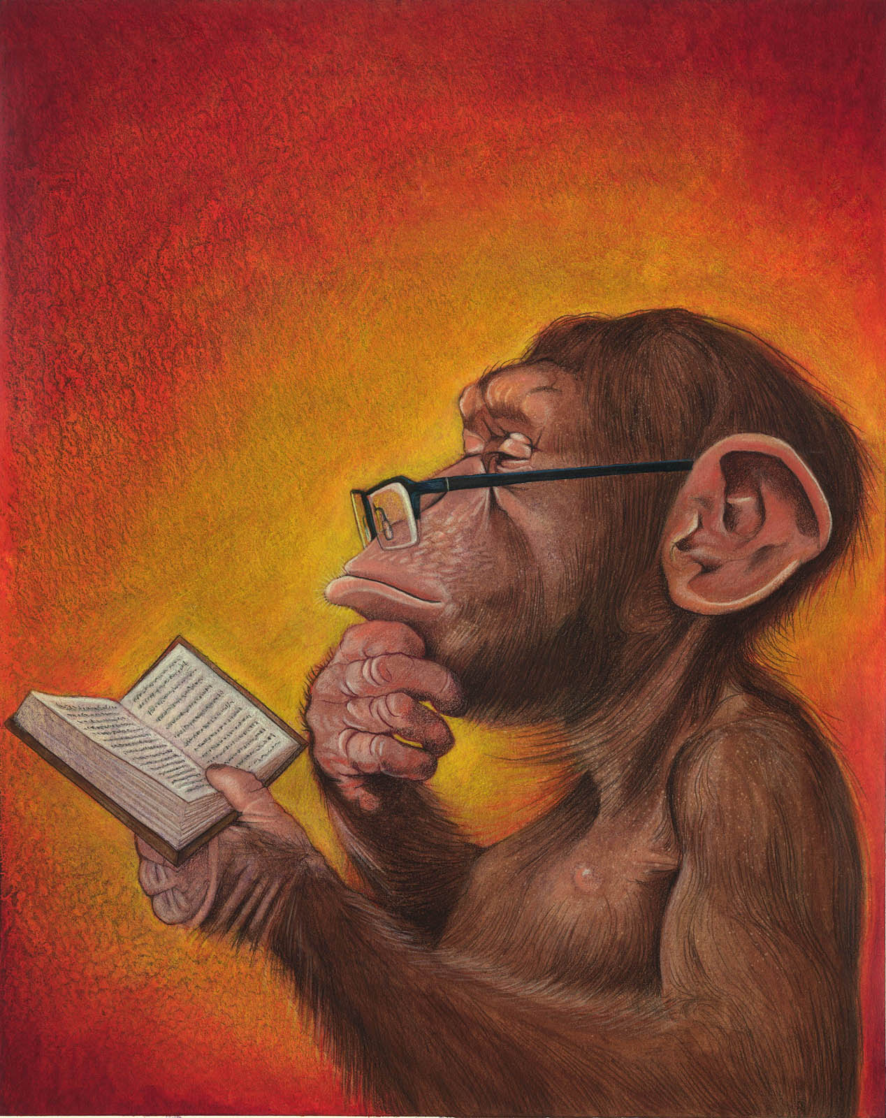 The book monkey business